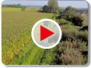 Saint-Omer Video